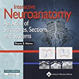 Interactive Neuroanatomy: An Atlas of