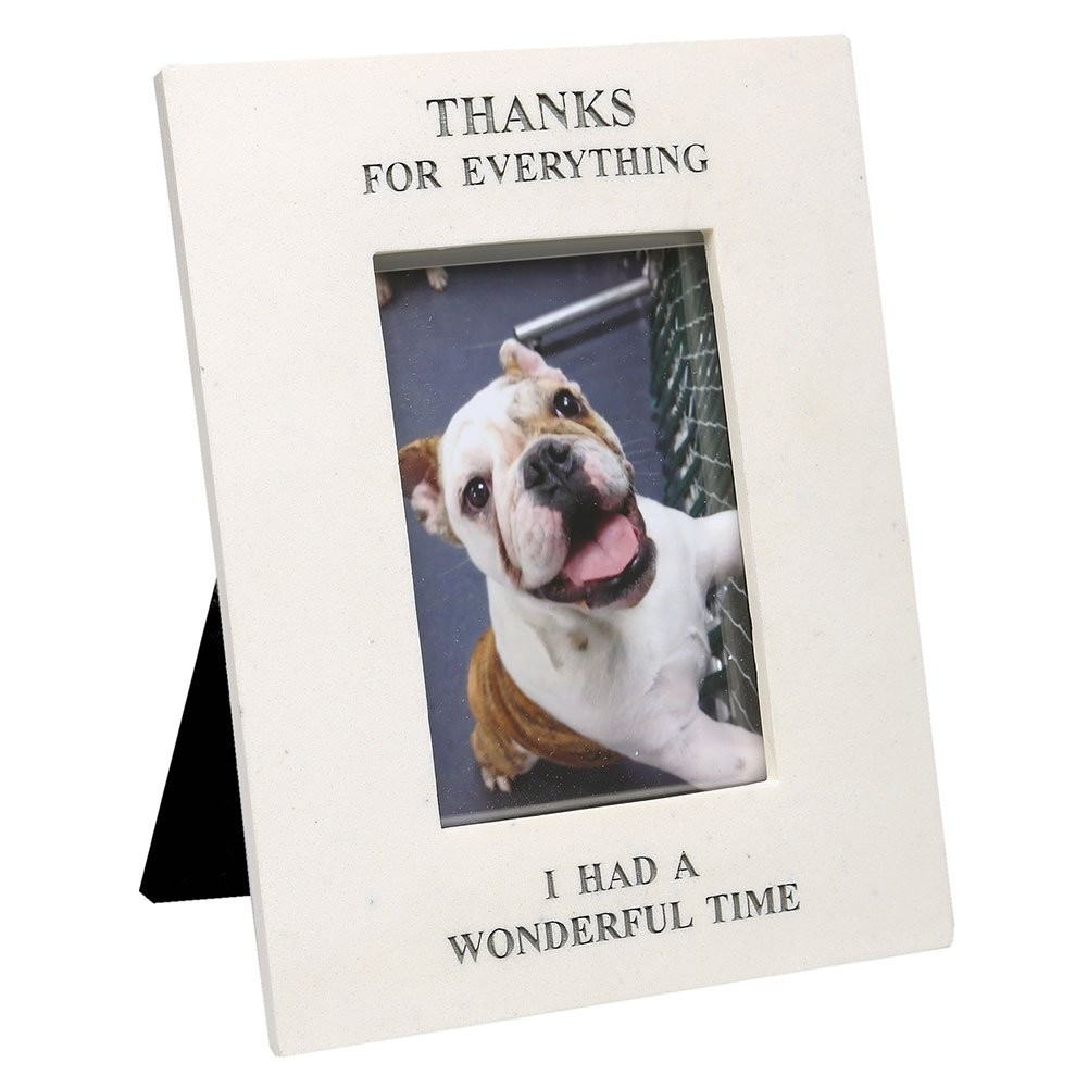 Thanks for Everything Pet Memorial Rectangle Picture Frame by House Parts