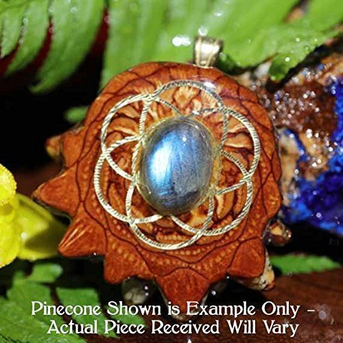 Labradorite with Seed of Life Third Eye Pinecone Pendant by Third Eye Pinecones