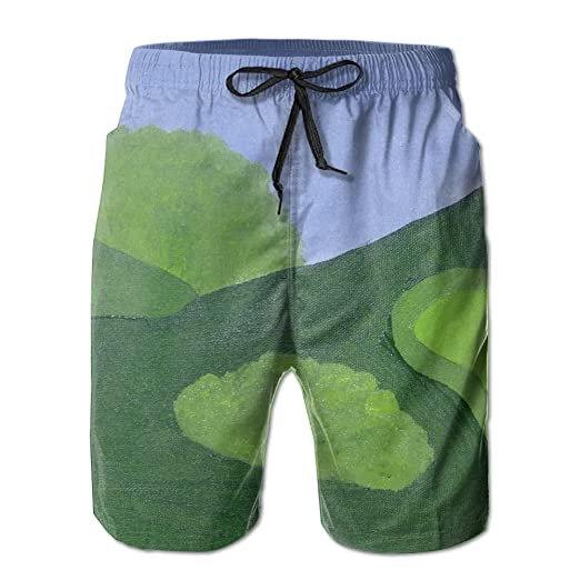 30f9c37097 Beachsite Golf Painting Men's/Boys Casual Shorts Swim Trunks Swimwear  Elastic Waist Beach Pants With