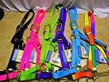 Valhoma Calf Yearling Cow Bul Nylon Control Chain Show Barn Halter (Hot Pink, Cow)