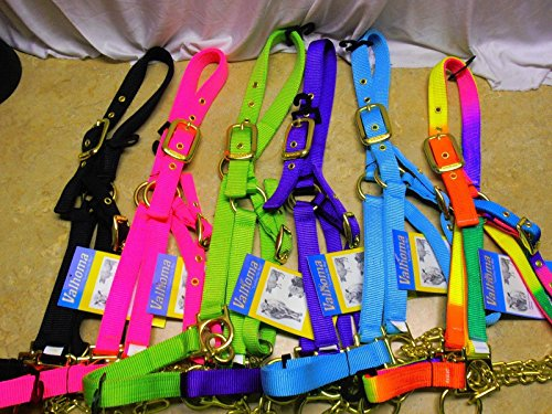 Yearling Show Halter (Valhoma Calf Yearling Cow Bul Nylon Control Chain Show Barn Halter (Rainbow, Yearling)