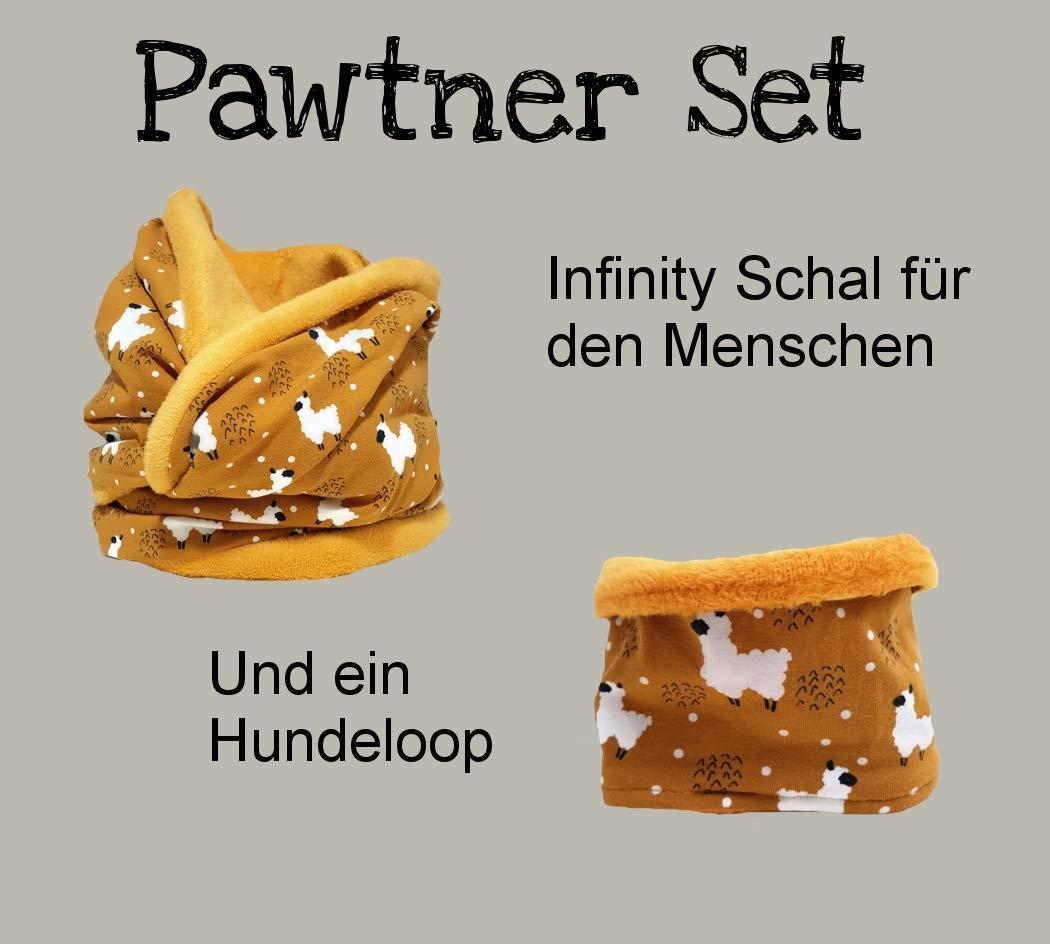 Pawtner Set - Mensch und Hund - Alpaca