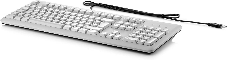 HP Teclado Profesional Dispositivo USB (Gris) – Entrada (Standard, ultraplano con inalámbrico, USB, Teclado de Membrana, Gris)