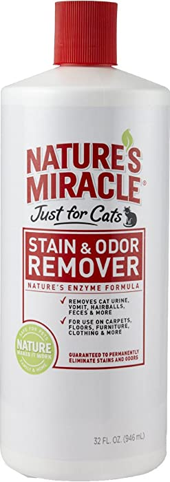 Top 10 Natures Miracle Hairball Cleaner