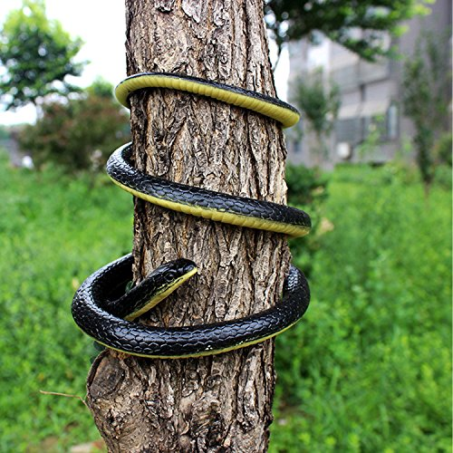 Realistic Fake Rubber Snakes | Z Novelties