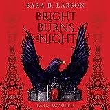 Bright Burns the Night: Book 2 of Dark Breaks the Dawn