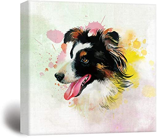 Amazon Com Square Dog Series Canvas Wall Print Art Painting A Border Collie Painting With Color Splash Background Wall Poster Canvas Art Modern Home Decor Stretched And Framed Ready To Hang