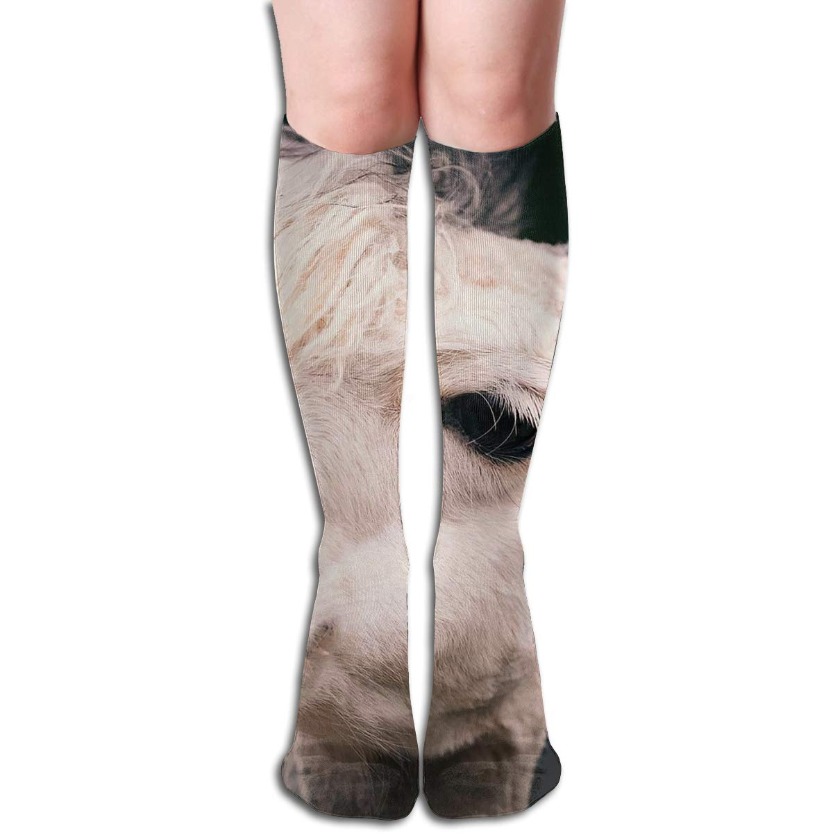 Amazon.com: Bandnae 19.68 Inch Compression Socks Animals ...