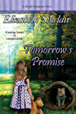 Tomorrow's Promise: Volume 5 (The Hawks Mountain Series)