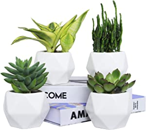 Plant Pot, Rosoli 4pcs Ceramics Indoor Planter Garden Pots for Succulents, African Violets, Cactus, Herbs - 3.5 Inch Flower Pots with Drainage Hole and Waterproof Tray (White).