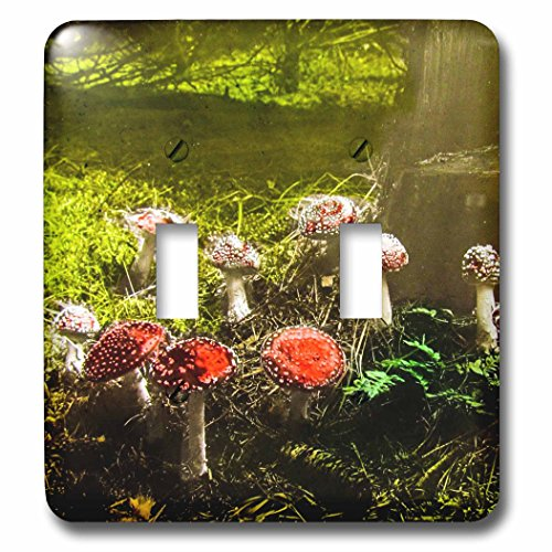 (3dRose Scenes from the Past Magic Lantern - Vintage Fantastic Funky Fungus Mushrooms in the Forest 1890s - Light Switch Covers - double toggle switch (lsp_246047_2))