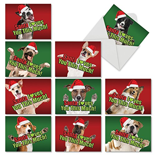 M6611XSG Santa Loves You This Much Dog: 10 Assorted Christmas Note Cards Featuring Charming Dogs Giving Love in the Christmas Spirit, w/White Envelopes.