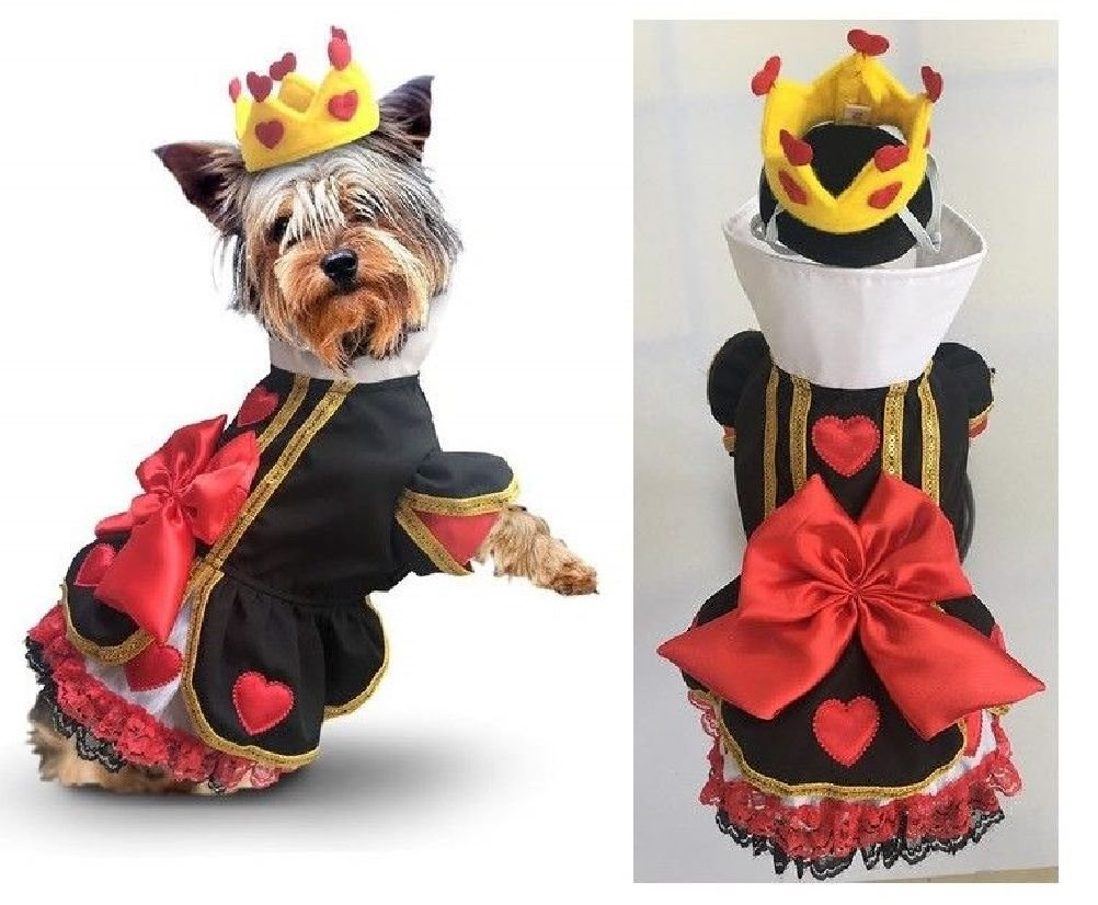 Dog Costume Royal Queen Of Hearts Dress & Crown Wonderland Character Outift