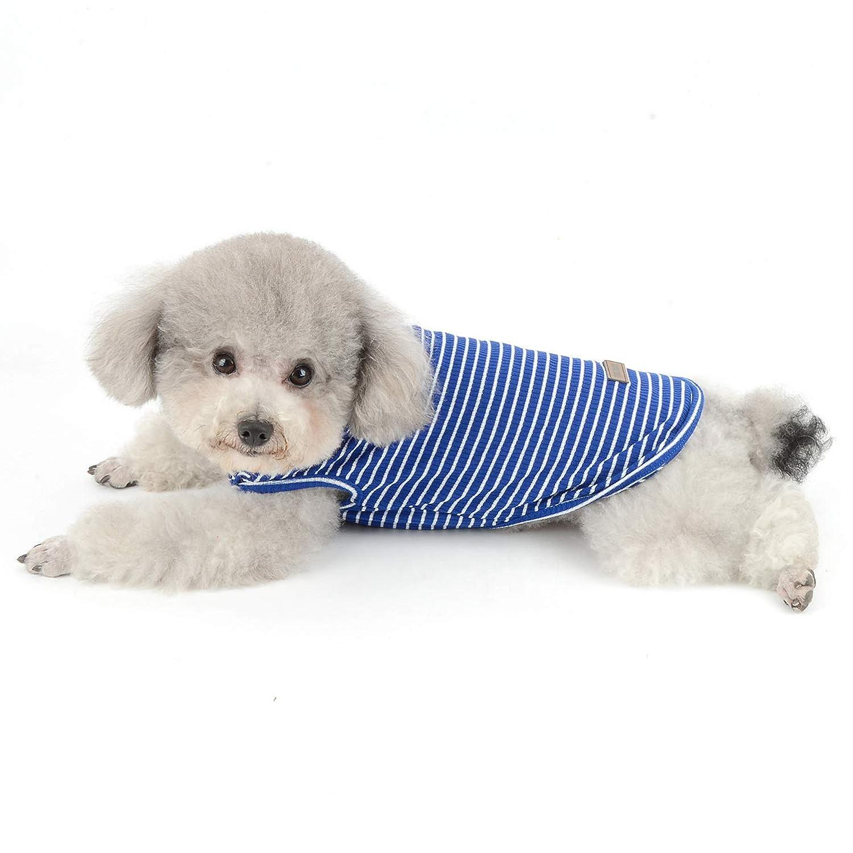smalllee/_lucky/_store sin Mangas Chaleco de Chihuahua Ropa de Verano 5 Colores Camiseta b/ásica de Punto de algod/ón a Rayas para Perros peque/ños