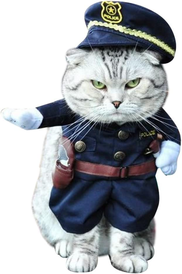 A cat wearing a police officer costume