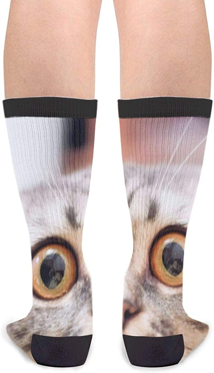 YISHOW Madness Frightened The Cat And Closed Its Eyes With Big Eyes Personalized Casual Socks