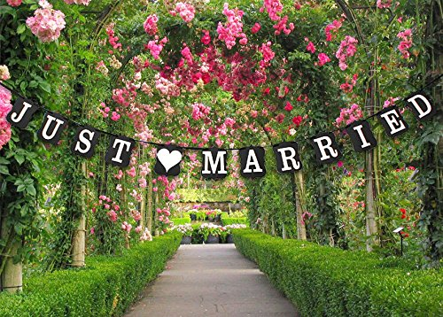 QTMY Vintage JUST MARRIED Wedding Banner Photo Props