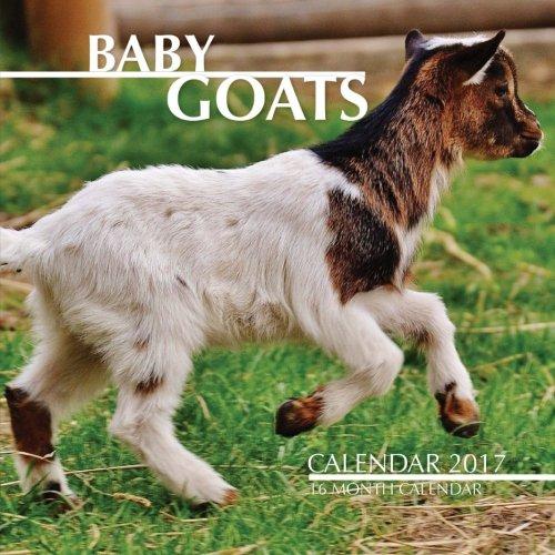 baby-goats-calendar-2017-16-month-calendar