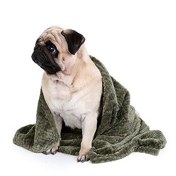 EisEyen softe cálidos de Gato - Manta térmica Perros para ...