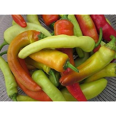 Hot Banana F1 Hybrid Hot Pepper Seeds (20 Seed Pack) : Garden & Outdoor