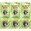 Burt's Bees 100% Natural Res-Q Ointment, 0.6 Ounces, Pack of 3