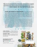 The-Stash-Plan-Your-21-Day-Guide-to-Shed-Weight-Feel-Great-and-Take-Charge-of-Your-Health
