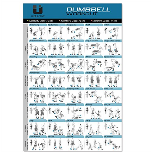 Large Dumbbell Workout Exercise Poster product image