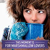 Swiss Miss Marshmallow Lovers Hot Cocoa Mix, (6) 1.38 Ounce Envelopes of Cocoa and (6) 0.2 Ounce Envelopes of Marshmallows