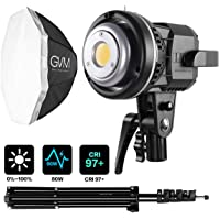 GVM Great Video Maker 80W LED Continuous Output Lighting Kit with 22in Softbox & Bowens Mount