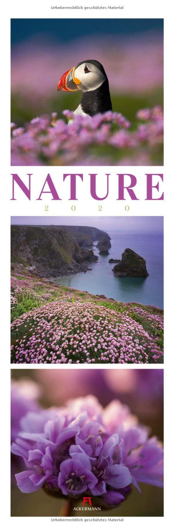 Nature 2020 Wandkalender Im Hochformat  33x100 Cm    Inspirationskalender   Naturkalender   Triplets Mit Monatskalendarium