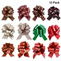 SKINOSM Pull Bows for Christmas Decoration and Gift Wrap Double-Sided Pattern Gift Bows (12 Pieces with Different Patterns)