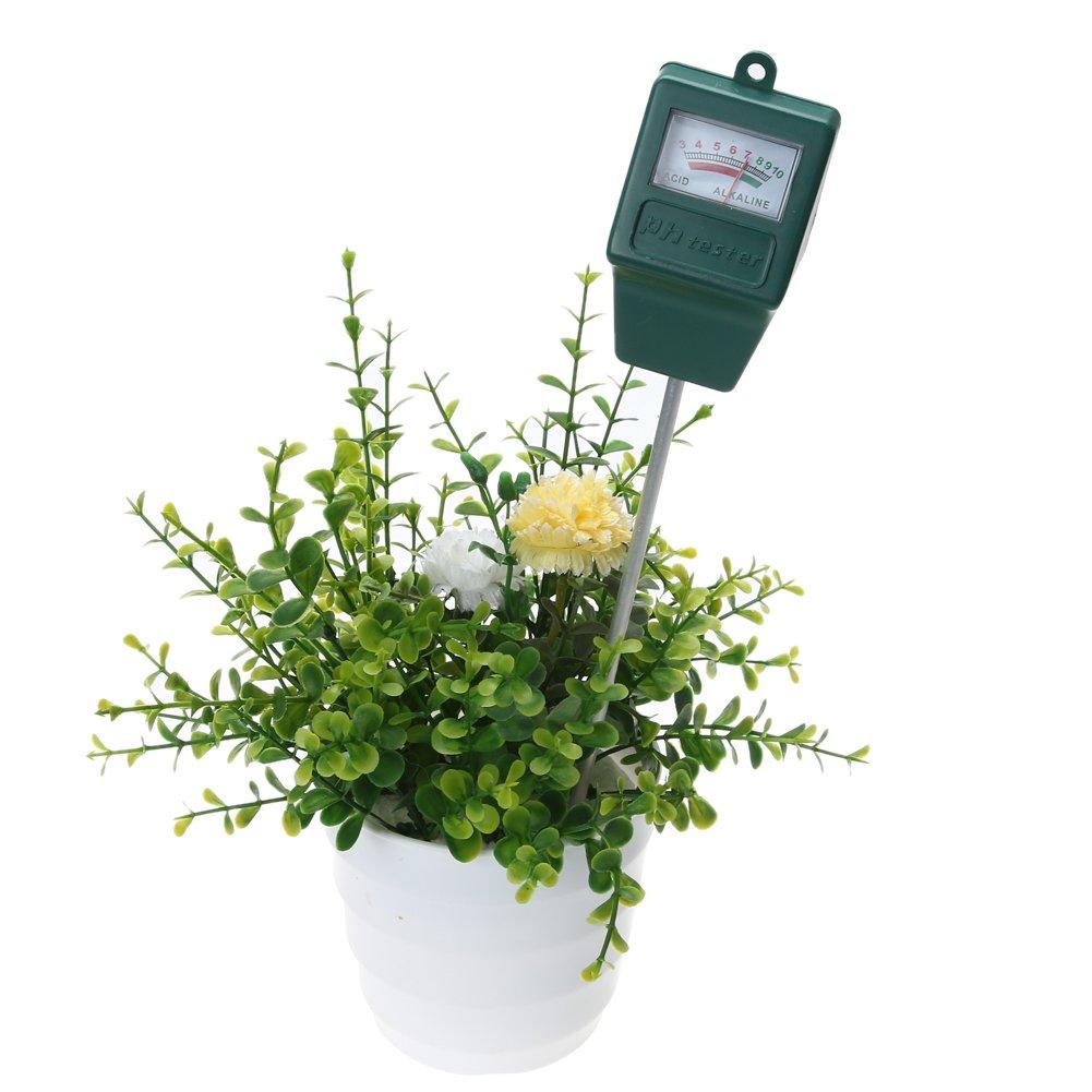Everpert Boden pH-Wert-Tester f/ür Pflanzen Kulturen Blumen Gem/üse