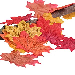 AmyHomie 300 Artificial Fall Maple Leaves in a Mixture of Autumn Colors - Great Autumn Table Scatters for Fall Weddings & Autumn Parties 6