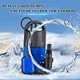 1 HP Submersible Pump 110V/60Hz Clean/Dirty Submersible Water Pump Flood Drain Garden Pond Swimming Pool Pump (1 HP_Blue)