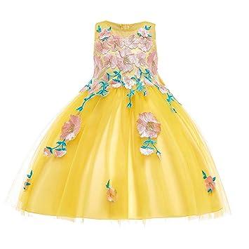 feiXIANG Niña sin Mangas Flor Aplique Vestido de Princesa Vestido de Falda Pettiskirt Dama de Honor Vestido de Belleza Vestido de Fiesta de cumpleaños ...