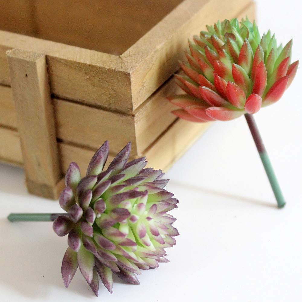 D/écoration de Jardin en Plastique rooteroy Shihao159 Cactus Artificiel Miniature r/éaliste Rouge