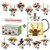 Best Tea Pots - Tealyra - 12 pcs Blooming Tea and 30.5-ounce Review