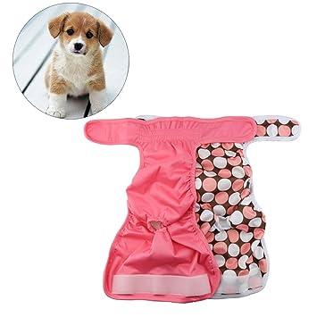 UKCOCO 2 Piezas Lavable Braguitas para Perros, Pantalones Sanitarios Fisiológicos de Pañales para Perros,