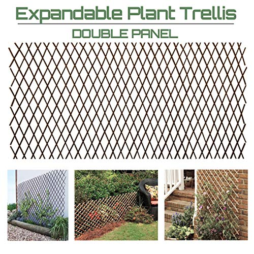 Garden Land Willow Expandable Plant Climbing Lattices Trellis Fence Support 36x92 (Garden Fence Trellis)