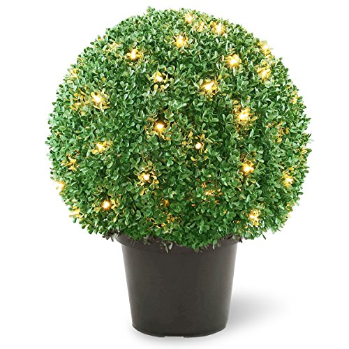 Outdoor Lighted Topiary Trees - 4