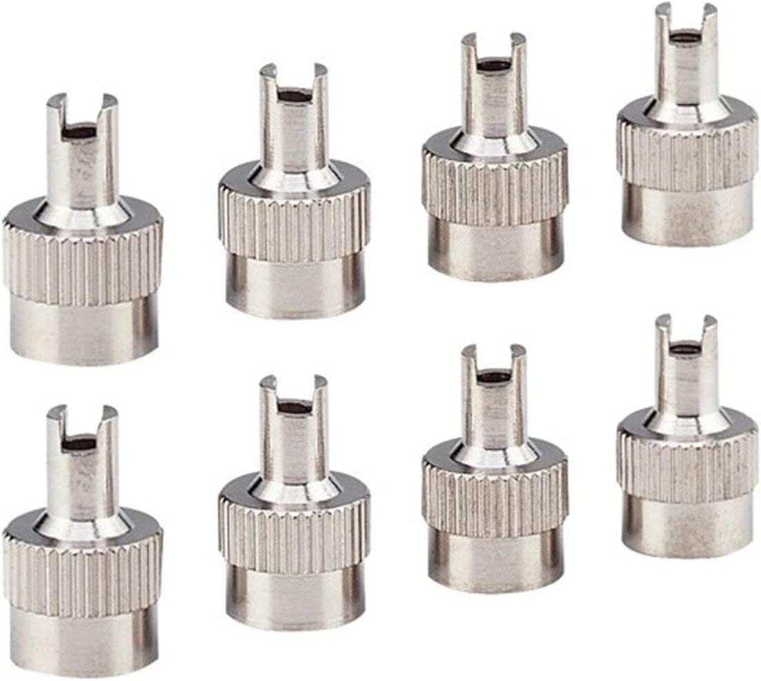fengzong 8pcs//Set Chrome Metal Slotted Head Valve Stem Caps With Core Remover Tool for Motorcycle//Car Repair Tool silver
