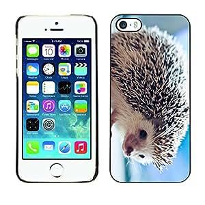 Be Good Phone Accessory // Dura Cáscara cubierta Protectora Caso Carcasa Funda de Protección para Apple Iphone 5 / 5S // The Friendly Hedgehog