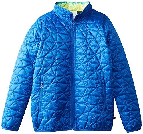 (Burton Boys Madison Jacket, Large, Web/Surf)