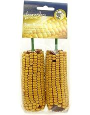 Rosewood Lot de 10 épis de maïs pour Petit Animal