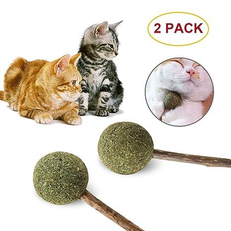 Catnip Lollipop - Pasta de masticar para gato natural puro para gatito de mascota, barras de vid ...