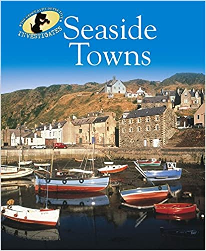 Book Seaside Towns (Geography Detective Investigates)
