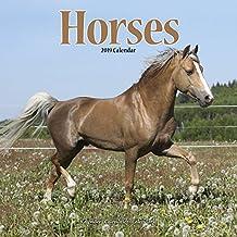 Horses Calendar 2019