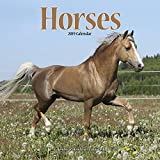 Horse Calendar - Calendars 2018 - 2019 Wall Calendars - Animal Calendar - Horses 16 Month Wall Calendar by Avonside