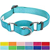 Training Dog Collar - Blueberry Pet 12 Colors Safety Training Martingale Dog Collar, Medium Turquoise, Small, Heavy Duty Nylon Adjustable Collars for Dogs
